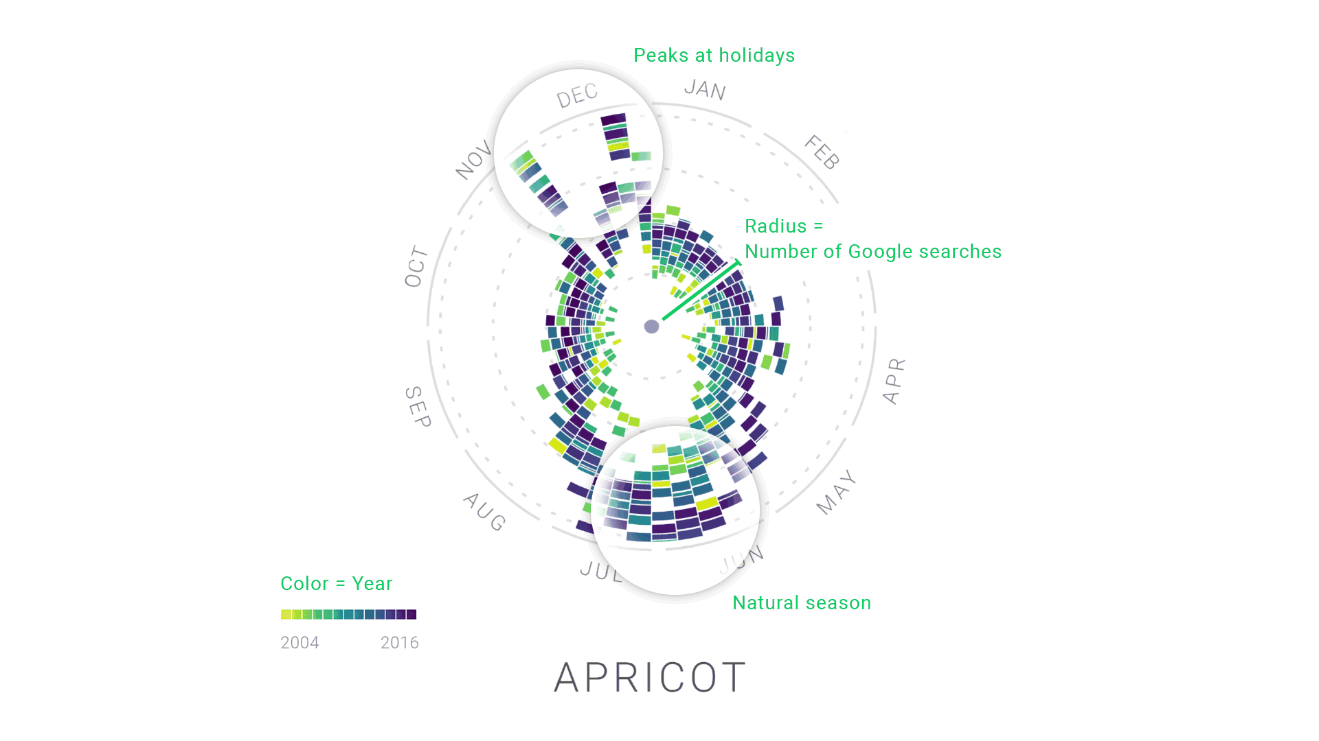 "We thought the radial ""year clock"" chart was a really effective new way to visualize Google Trends data."